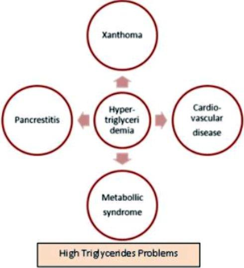 high triglycerides problem