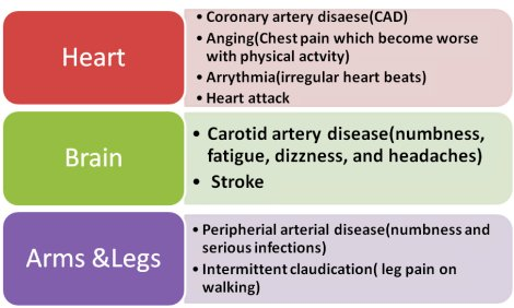 atherosclerosis disease - definition, Human Body