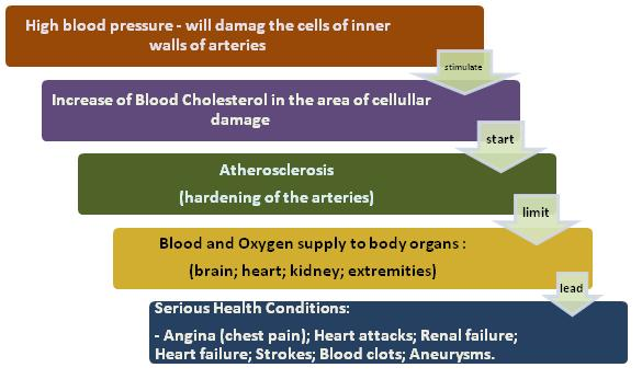 High Cholesterol consequences in our body
