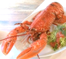 Lobster and Cholesterol