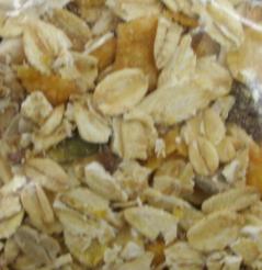 oatmeal cholesterol