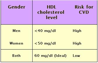 risk foc cvd cholesterol