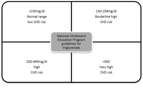 normal triglycerides levels